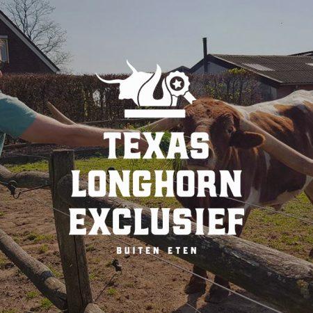 texas-longhorn-afbeelding